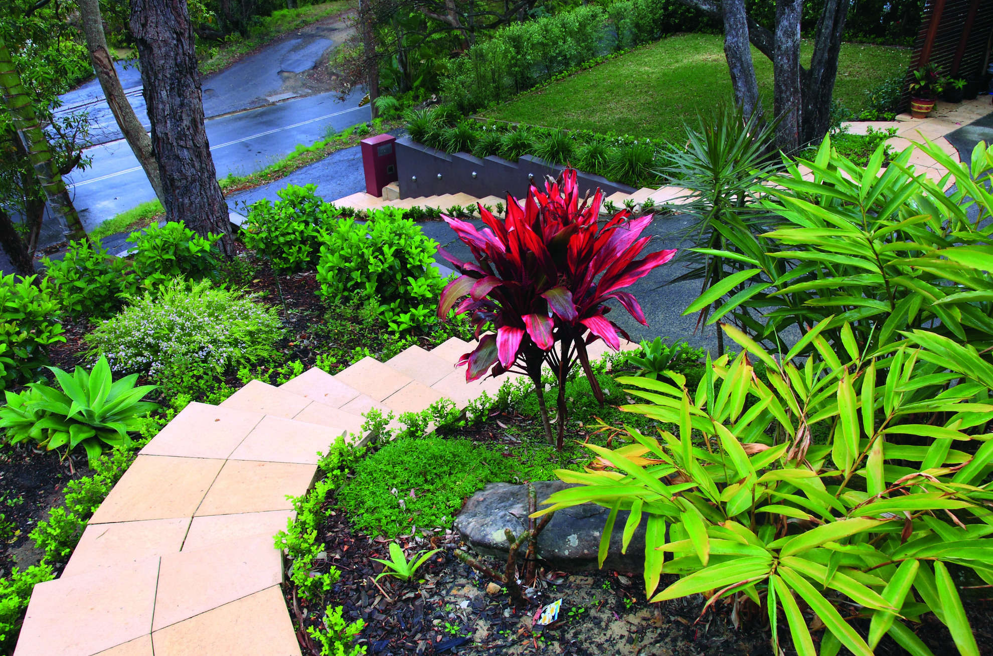 Manna landscapes quality landscape design landscaping and gardening landscaping services sydney northern beaches workwithnaturefo