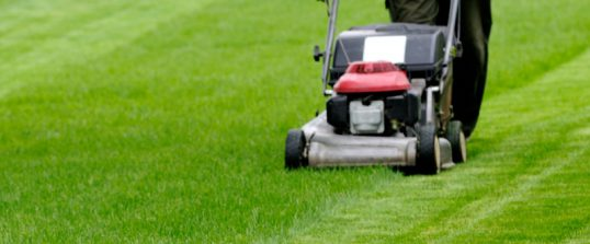 Lawn Mowing Services in Sydney, North Shore & Northern Beaches