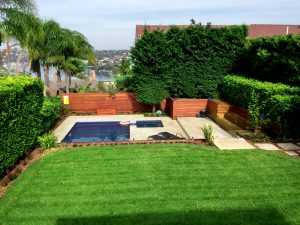 Feature-4-Garden-Care-and-Landscaping-Maintenance