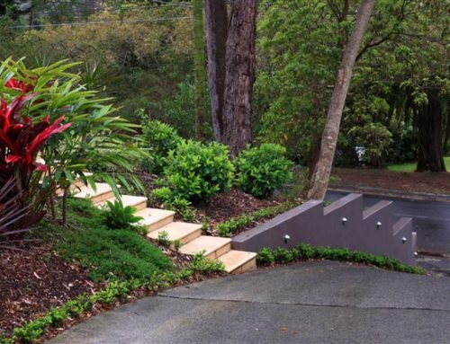 How Much Does Landscaping Cost In Sydney?